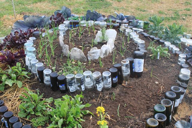 Bottle Spiral Garden