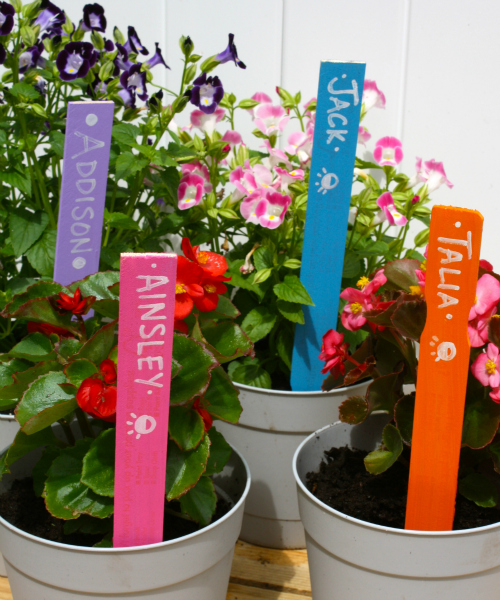 Paint Stick Garden Markers