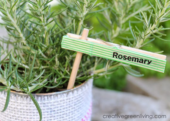Plant Markers from Clothespins
