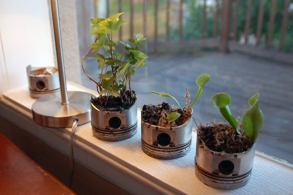 Piston Planters