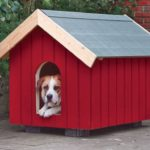 Classic Red Dog House