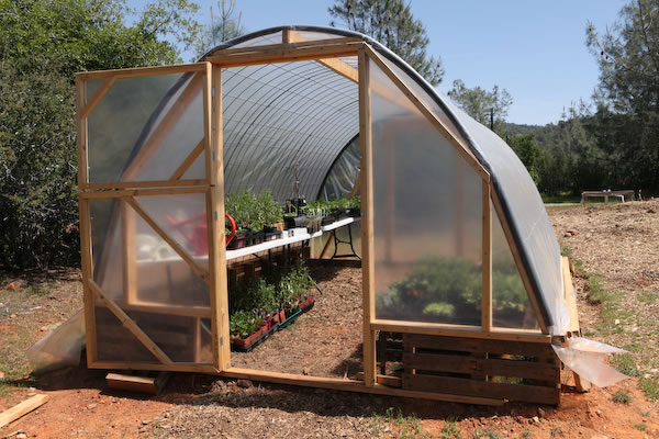 Cattle Panel Pallet Greenhouse