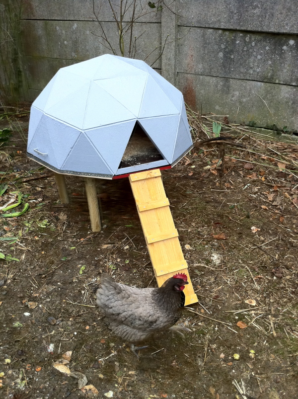 Geodesic dome chicken house