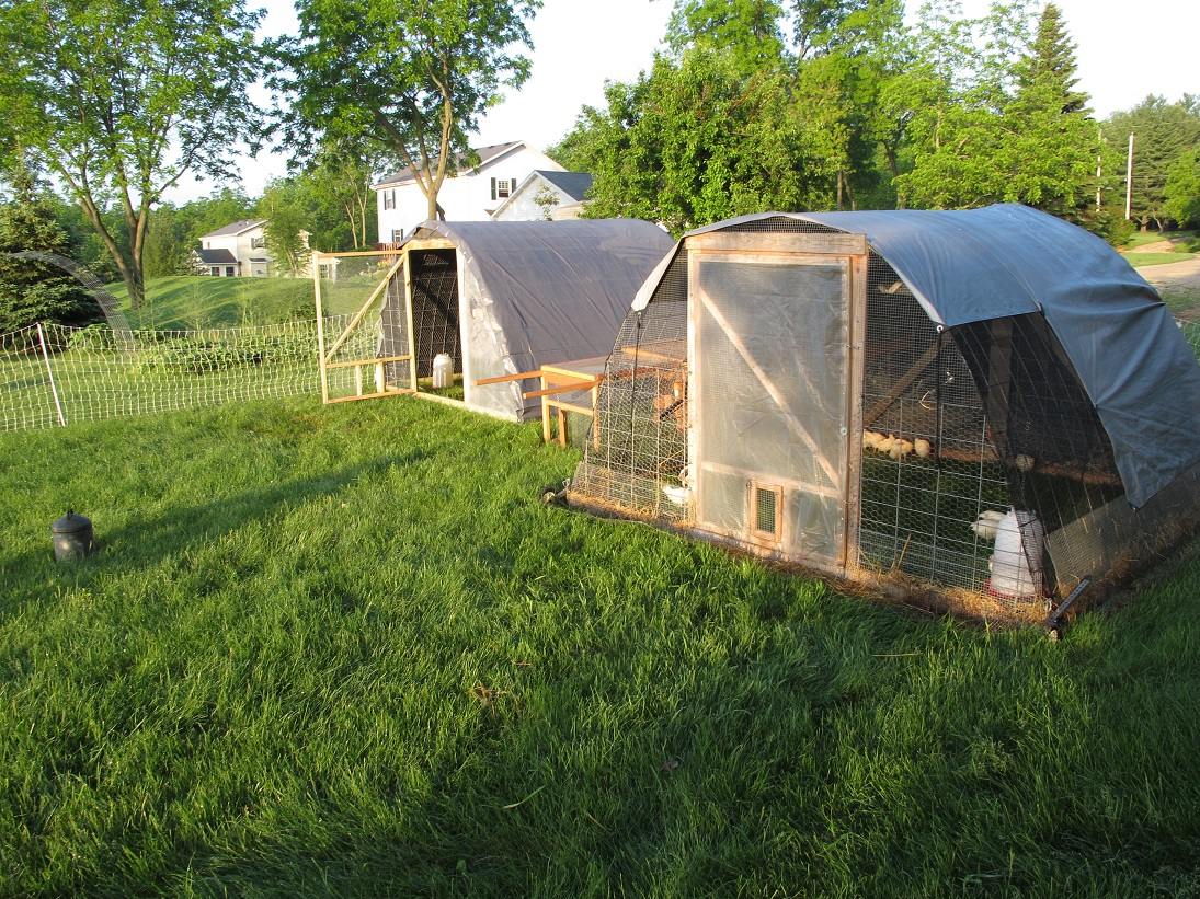 Hoop Chicken Coop