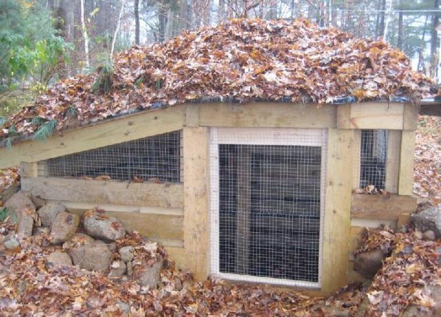 Underground Chicken Coop