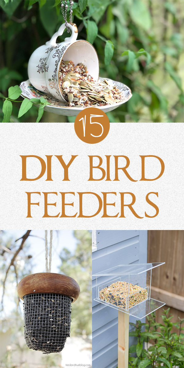 15 Easy DIY Bird Feeders That Will Fill Your Yard with Songbirds