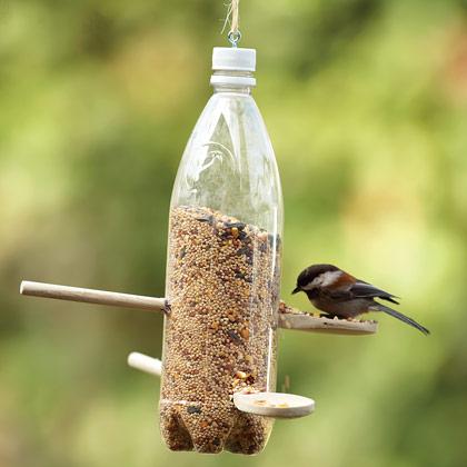 Spoons and Soda Bottle Bird Feeder