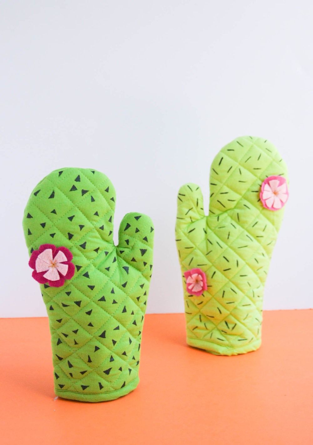 Cactus Oven Mitts