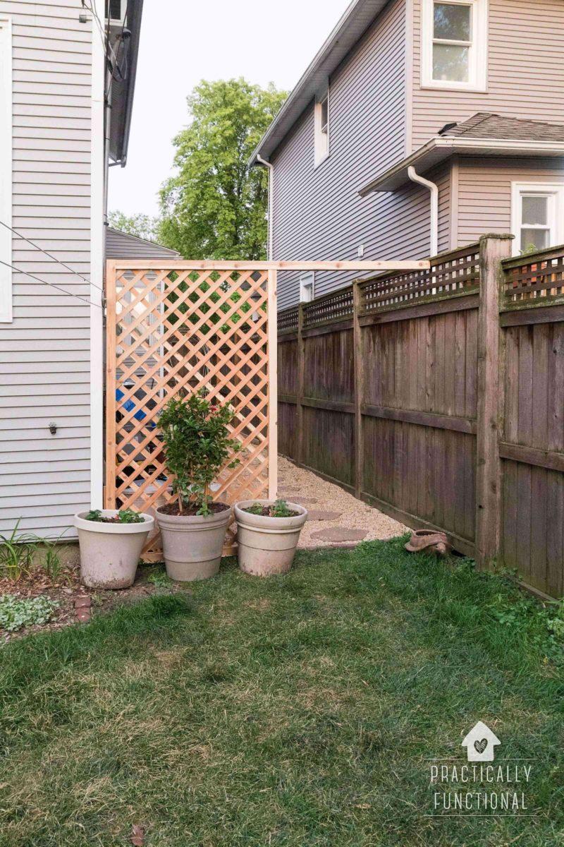 Trellis Backyard Privacy Screen